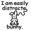 easily-distracte-bunny.jpg#asset:19